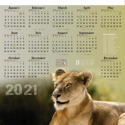 a2-lion