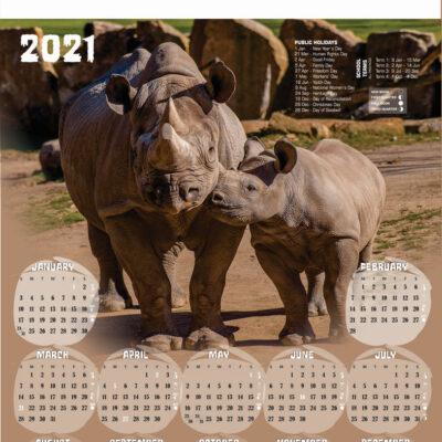 a2-rhino