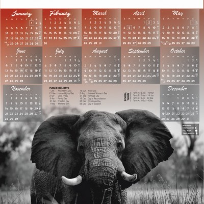 a2-elephant