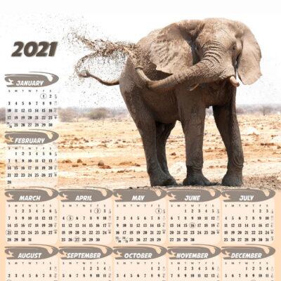 a3-elephant
