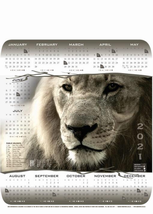 a3-lion