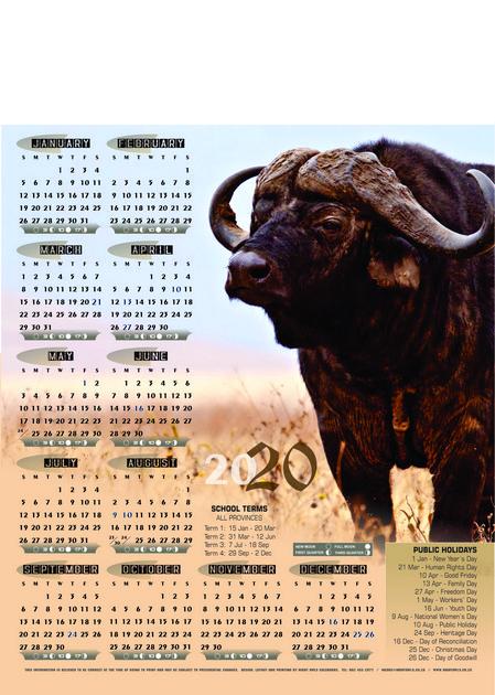 buffalo-a3