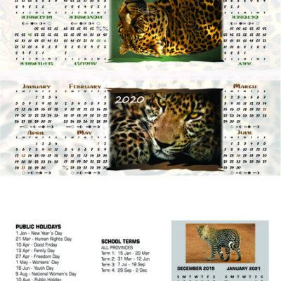 leopard-tri