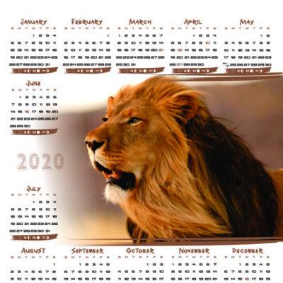 lion-a3