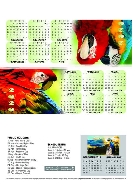 parrot-tri