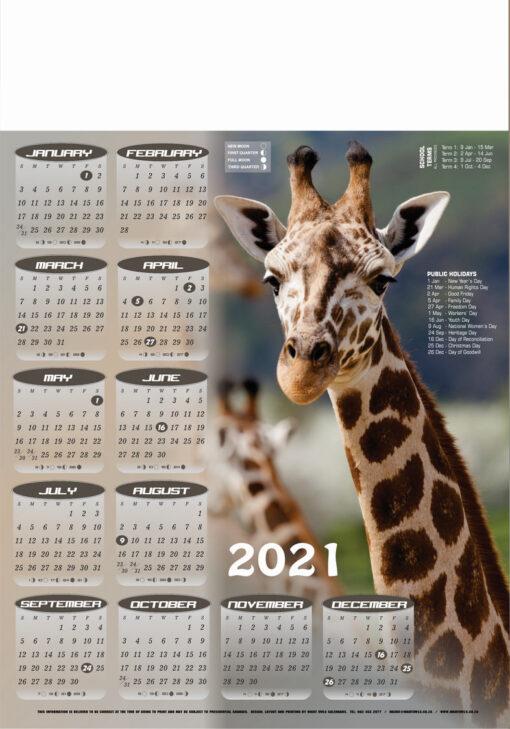 a2-giraffe