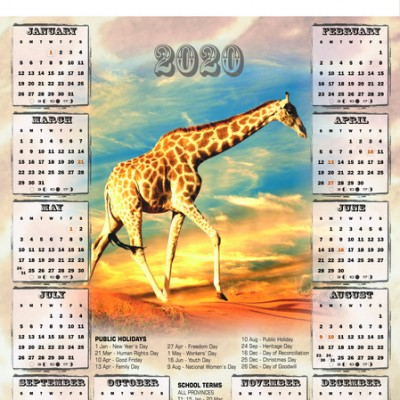 giraffe-a2